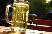 A Gulasch und a Seitl Bier - Wolfgang Ambros