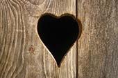 Wir sind für die Liebe gemacht - ein neues Superlied - Höhner
