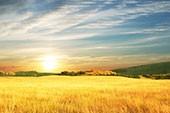 Lass die Sonne in dein Herz - Wind