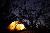 Träum mit mir durch die Sommernacht - Vikinger