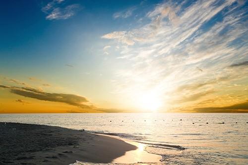 Sommer Sonne Honolulu - aus der neuen CD 2021 - Calimeros