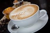 Kaffeebud - Bläck Fööss