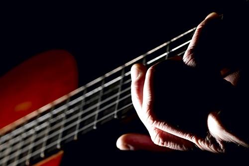 Anaconda - Schönes Gitarren Instrumental - Violets