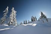Weihnacht in den Bergen - Alpentrio Tirol
