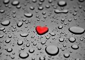 Herz über Kopf - Joris