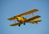 Der grosse Traum vom Fliegen - Cora