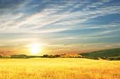 Wo meine Sonne scheint - neue wunderbare Version - Hein Simons