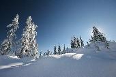 Weisser Winterwald - Weihnachtslied - Christmas Carol