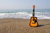 Zwei Gitarren am Meer - Billy Vaughn