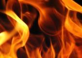 Die Liebe, die durchs Feuer geht - G.G. Anderson