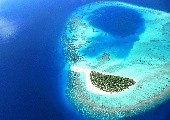 Komm doch mit auf meine Insel - Olaf (Flippers)