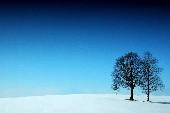 Winter Wonderland - Tischmusik Vol. 07 (Christmas)