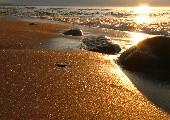 Deine Spuren im Sand - Howard Carpendale