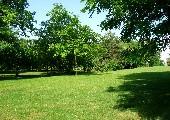 Drei weiße Birken - Die Wildecker Herzbuben
