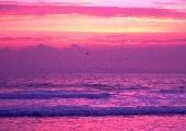 Pink Panther - Henry Mancini