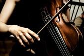 Wiener Melodien - Trio Wien