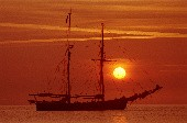 Pirates of the Caribbean - Ambros Seelos